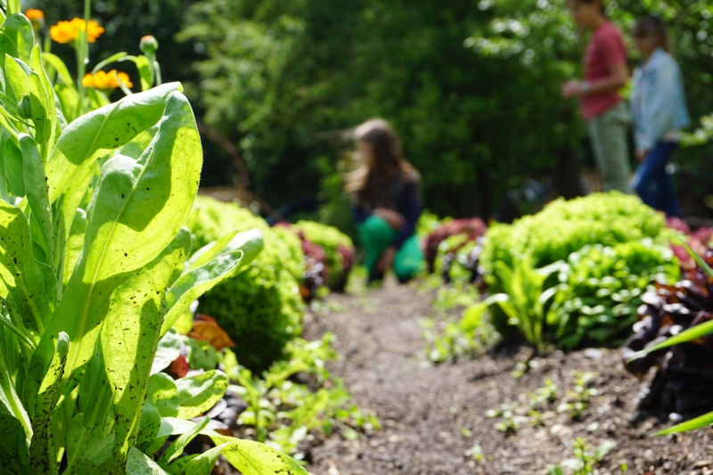 Gartenwerkstatt
